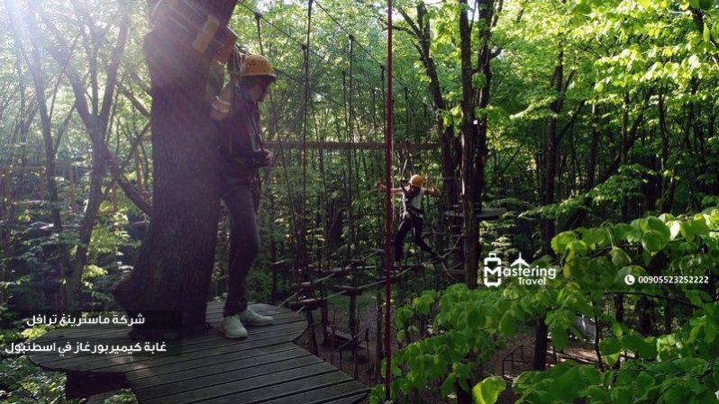 غابة كيميربورغاز في اسطنبول 1